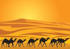 Free Sahara Desert Stock Image - 16862721