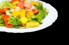 Free Salad Stock Photo - 16863540