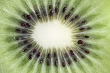 Free Fruit Kiwi Isolated In Close Up Macro Royalty Free Stock Photography - 16863797