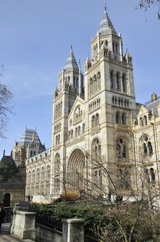 Free Natural History Museum, London Royalty Free Stock Images - 16865649