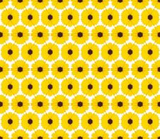 Free Yellow Flowers Background Royalty Free Stock Photos - 16867418