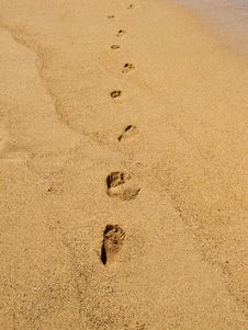 Free Footprints On The Beach Stock Photo - 16868660