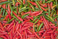 Free Red And Green Chili Stock Photography - 16870822