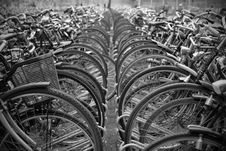 Free Bicycles Parked In Rows. Stock Images - 16870604