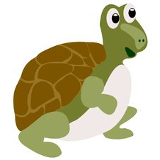 Free Drawing Of The Merry Terrapin Stock Photo - 16870640