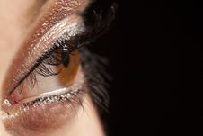 Free Beautiful Woman`s Open Brown Eye Stock Images - 16871234