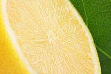 Free Half Lemon I Stock Photo - 16872210