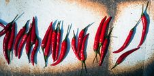 Free Peppers V2 Stock Images - 16873064