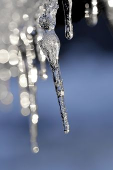 Free Icycles Royalty Free Stock Photo - 16873405