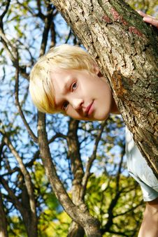 Free Attractive Blond Guy Behind A Tree Stock Photos - 16873423