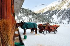 Horse And Sledge Stock Images