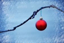 Free Red Ball Ornament On A Branch In A Blue Background Stock Photo - 16875100