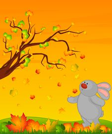 Free Bunny With Autumnal Leaves Royalty Free Stock Photography - 16879047