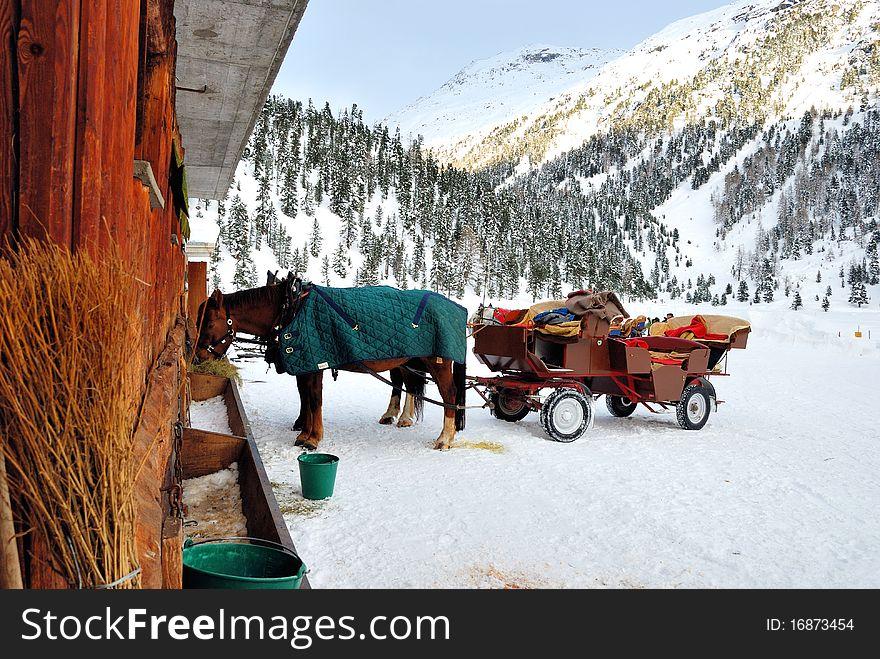 Horse and sledge