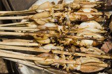 Free Grilled Calamari Stock Photos - 16881223