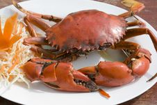 Free Boiled Crab Royalty Free Stock Image - 16881276
