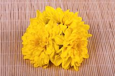 Free Yellow Bouquet Of Chrysanthemums Royalty Free Stock Image - 16883536