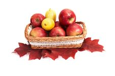 Free Ripe, Juicy Apples And Lemons In The Basket. Stock Photo - 16883700