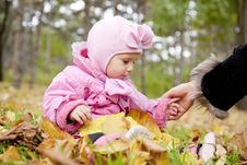 Free Little Child In The Park. Stock Photography - 16884192