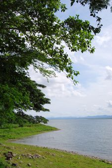 Free Big Lake Tree Day Thailand Royalty Free Stock Images - 16884909