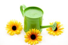 Free Green Watering Can Stock Photography - 16885312