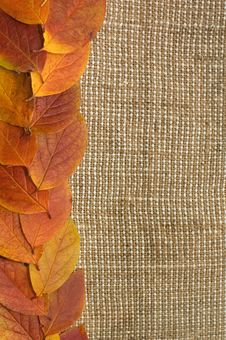 Free Autumn Leaves Over Burlap Background Royalty Free Stock Photos - 16886058