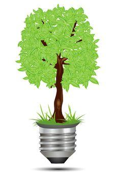 Free Tree On Bulb Holder Royalty Free Stock Image - 16886606