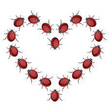 Free Ladybird Heart Stock Image - 16888321