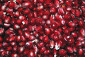 Free Pomegranate Berries Stock Photos - 16893783