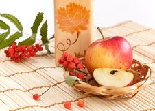 Free Autumnal Still Life. Stock Photos - 16890643