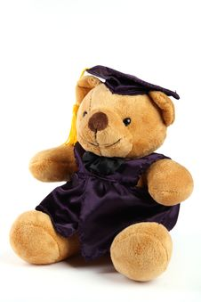 Graduation Teddy Bear Royalty Free Stock Photos