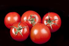 Free Tomatoes On Black Background Royalty Free Stock Photography - 16892607