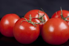 Free Tomatoes On Black Background Stock Image - 16892651