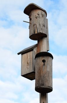 Free Three Starling-Houses Royalty Free Stock Image - 16894916
