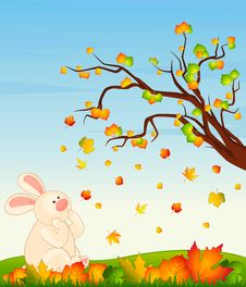 Bunny With Autumnal Leaves Stock Photos