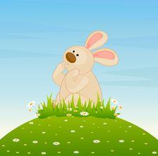 Cartoon Little Toy Bunny Stock Photos