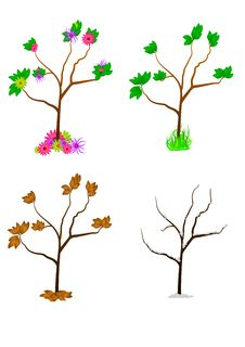 Free Seasonal Vector Trees Stock Photography - 16895702