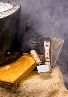 Free Attributes Beekeeper Stock Photo - 16896410