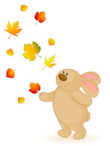 Free Bunny With Autumnal Leaves Stock Photo - 16896560