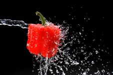 Free Red Pepper Gets Hit By A Water Royalty Free Stock Photography - 16896727