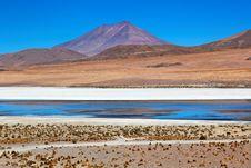 Free Laguna Desert, Bolivia Stock Photography - 16897022
