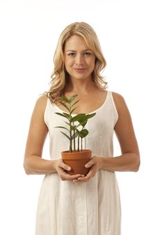 Woman Holding Potted Plant Stock Photography