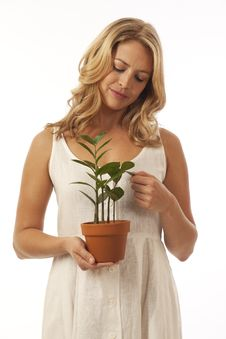 Free Woman Holding Potted Plant Stock Photography - 16898252