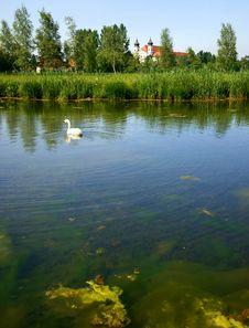 Free Bavarian Lake Royalty Free Stock Images - 16899839