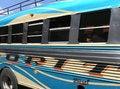 Free Bus Royalty Free Stock Photo - 1691845