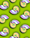 Free Sea Shells Royalty Free Stock Photos - 1699848