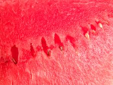 Free Juicy Watermelon Fresh Background Stock Image - 1691851