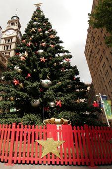 Free Christmas Tree Stock Images - 1692174