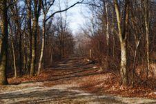 Free Walking Path Stock Image - 1693031