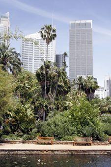 Free Urban Oasis Royalty Free Stock Photo - 1694835